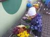Sadzimy jesienne kwiaty