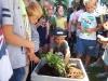 Sadzimy roślinki